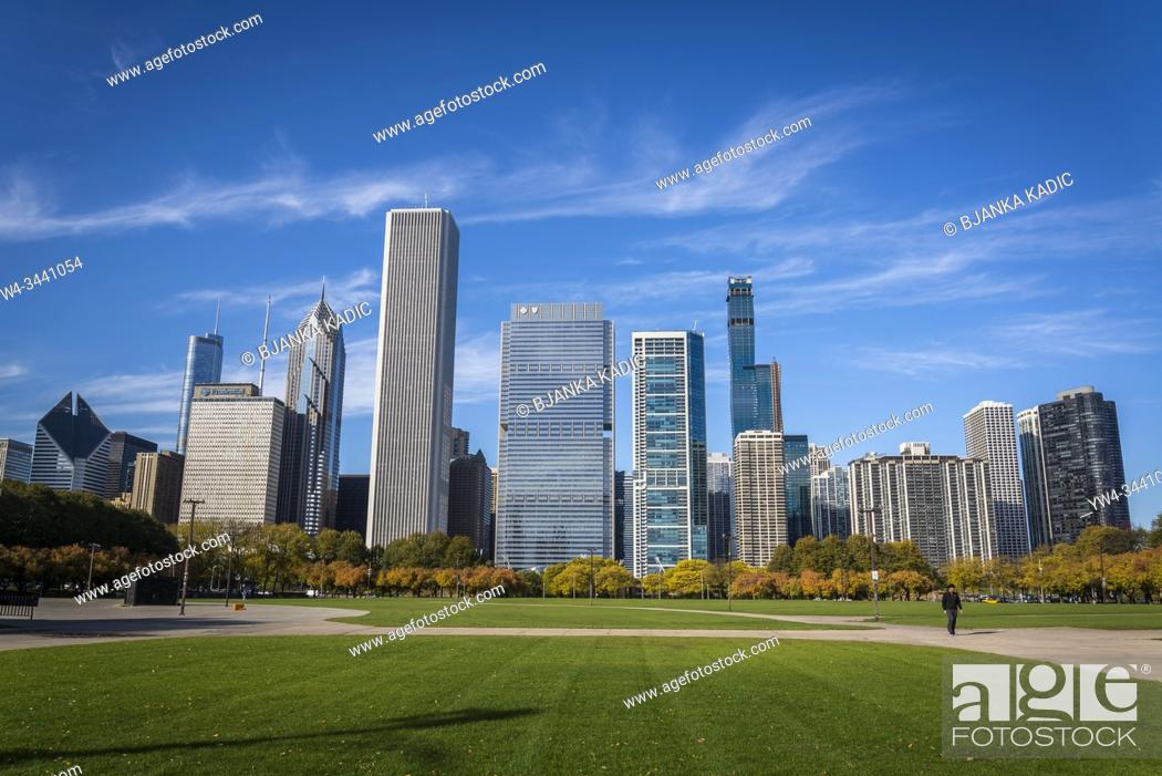 Stock Photo: Butler Field and skyline of skyscrapers north the Millennium Park, Chicago, Illinois, USA.
