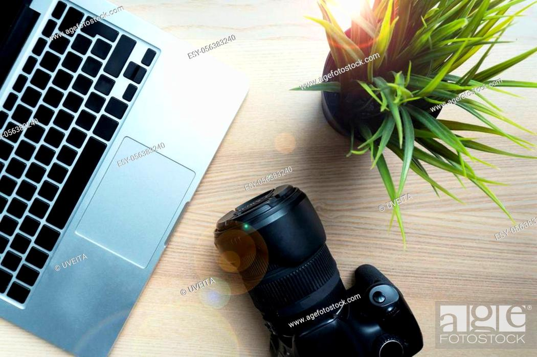 Stock Photo: Photographer lay camera on wooden table near green flower, modern laptop. Closeup of working place of creative person.