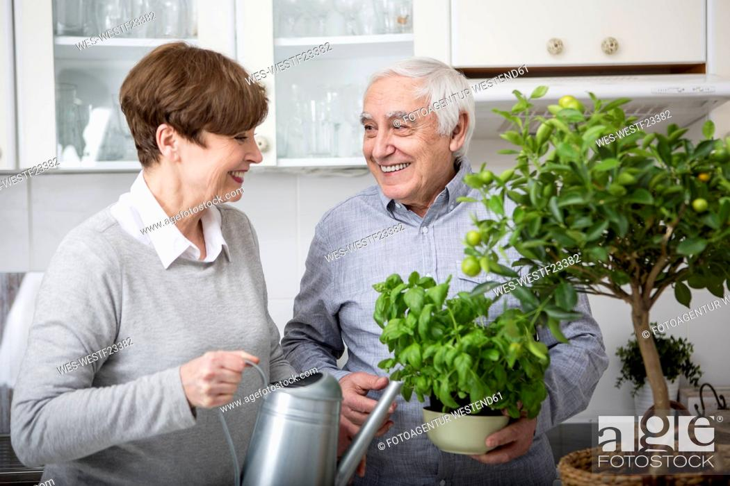Stock Photo: Senior couple watering potted plants in kitchen.