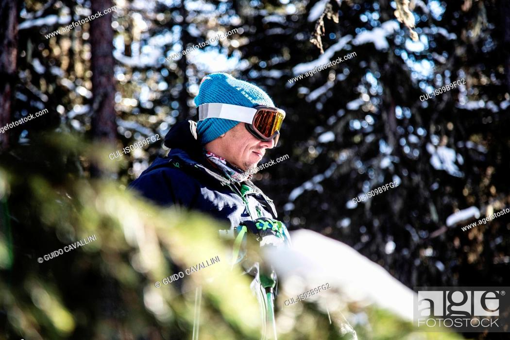 Photo de stock: Portrait of skier beside trees, looking at view.