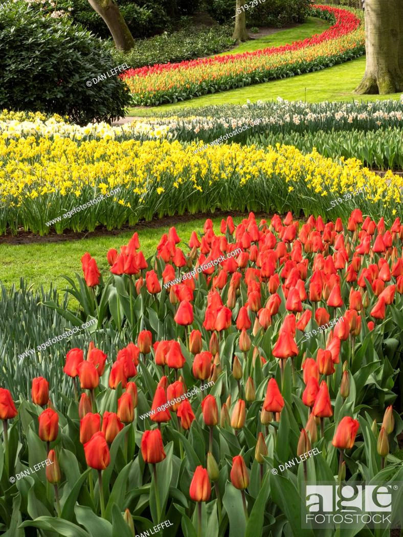 Stock Photo: Holland Keukenhof Gardens.