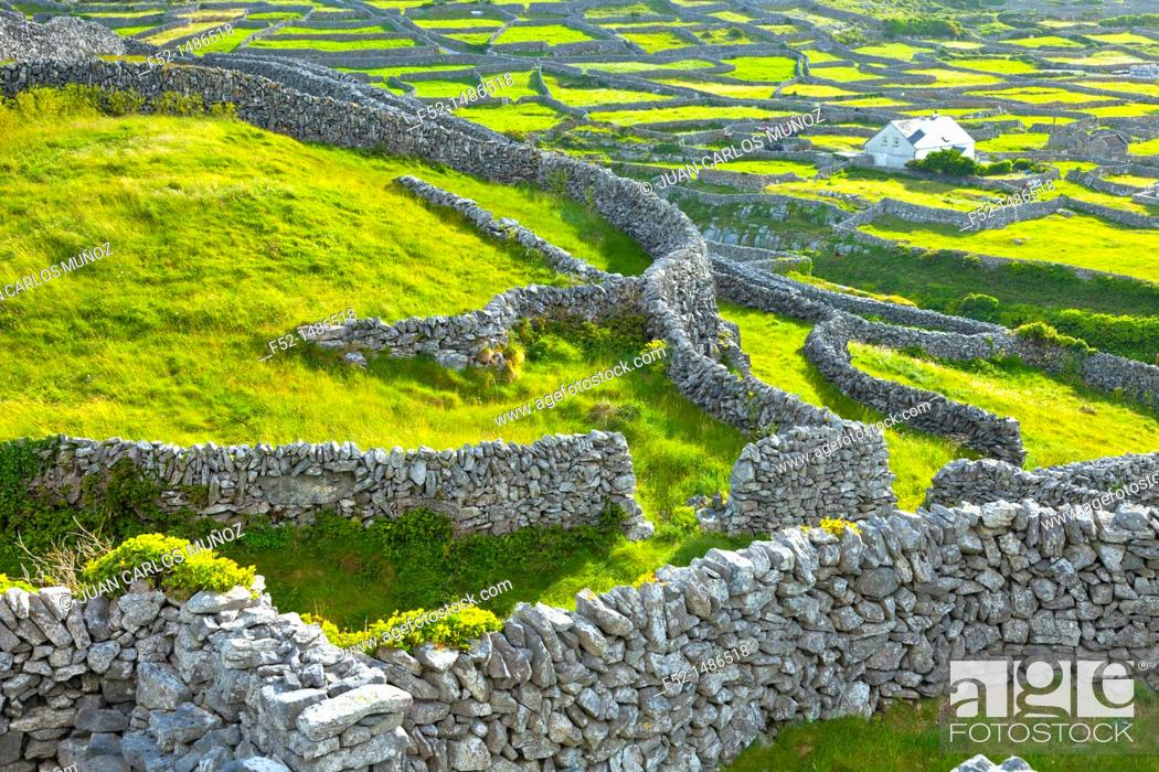 Imagen: Inisheer Island - Inis Oirr  Aran Islands, Galway County, West Ireland, Europe.