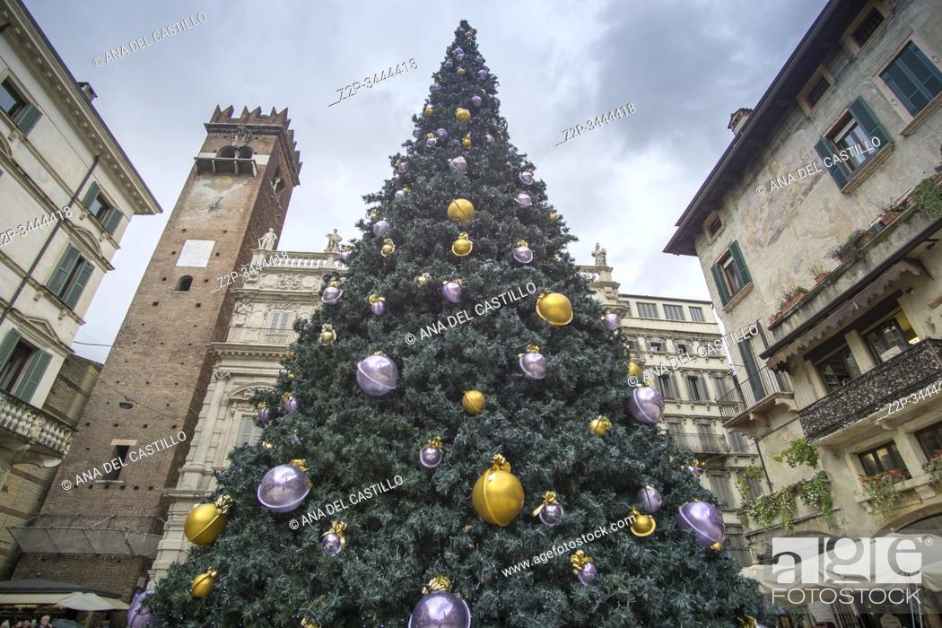 Stock Photo: Verona Veneto Italy on November 24, 2019: Christmas in Verona streets. Piazza delle Erbe with the Christmas tree.