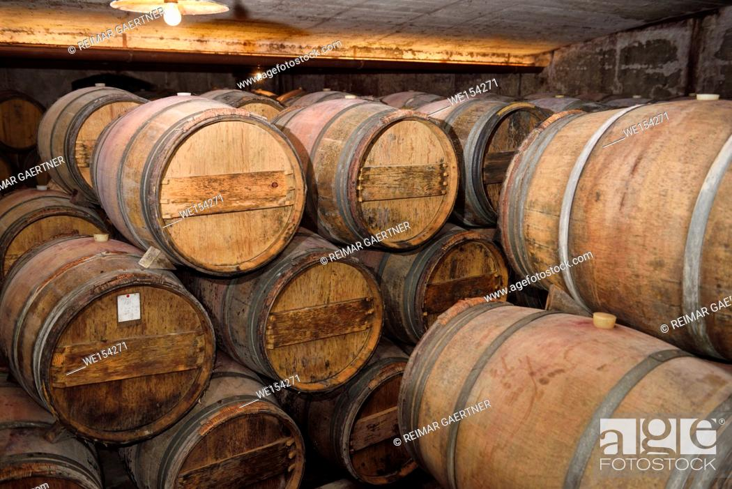 Stock Photo: Constant temperature arched cellar with French barrique oak barrels at Kabaj Morel Guest House and winery Slovrenc Dobrovo Brda Slovenia.