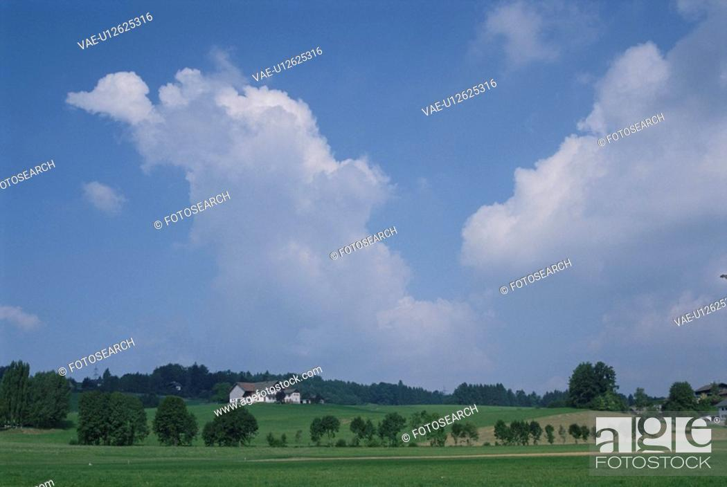 Stock Photo: Rural Landscape.