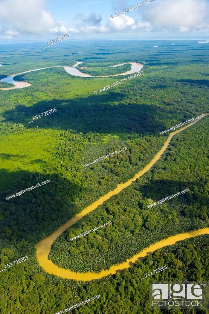 Stock Photo: Rainforest and Kinabatangan River, Sabah, Borneo island, Malaysia.