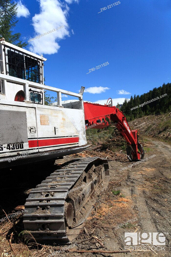 Stock Photo: Logging operation on south side of Skeena river, between Terrace and Hazelton, BC.