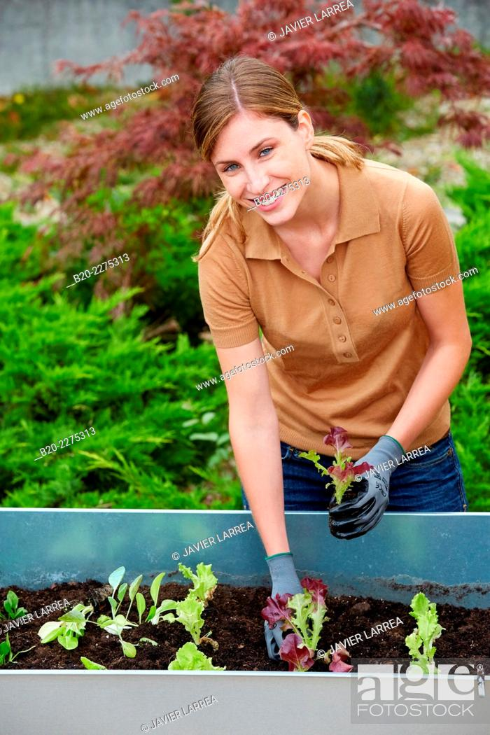 Stock Photo: Woman planting urban orchard. Garden.