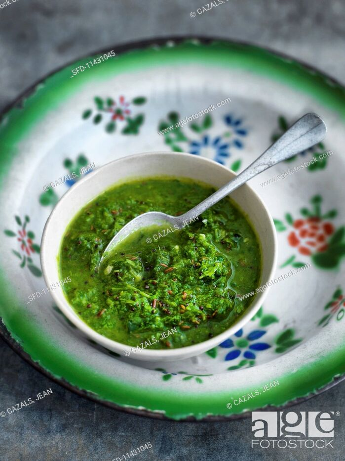Photo de stock: Coriander sauce.