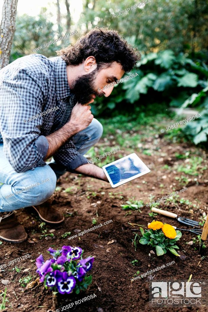 Stock Photo: Man taking photographs with a tablet of flowers planted in garden.