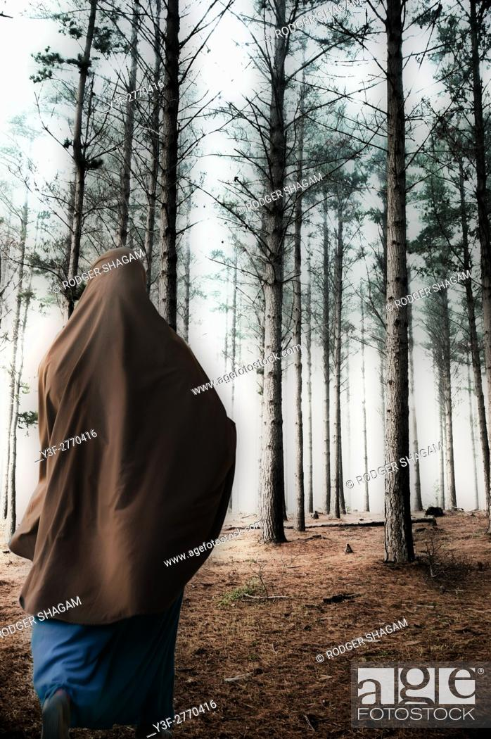 Stock Photo: Pine plantation with a robed figure. Cape Town, South Africa.