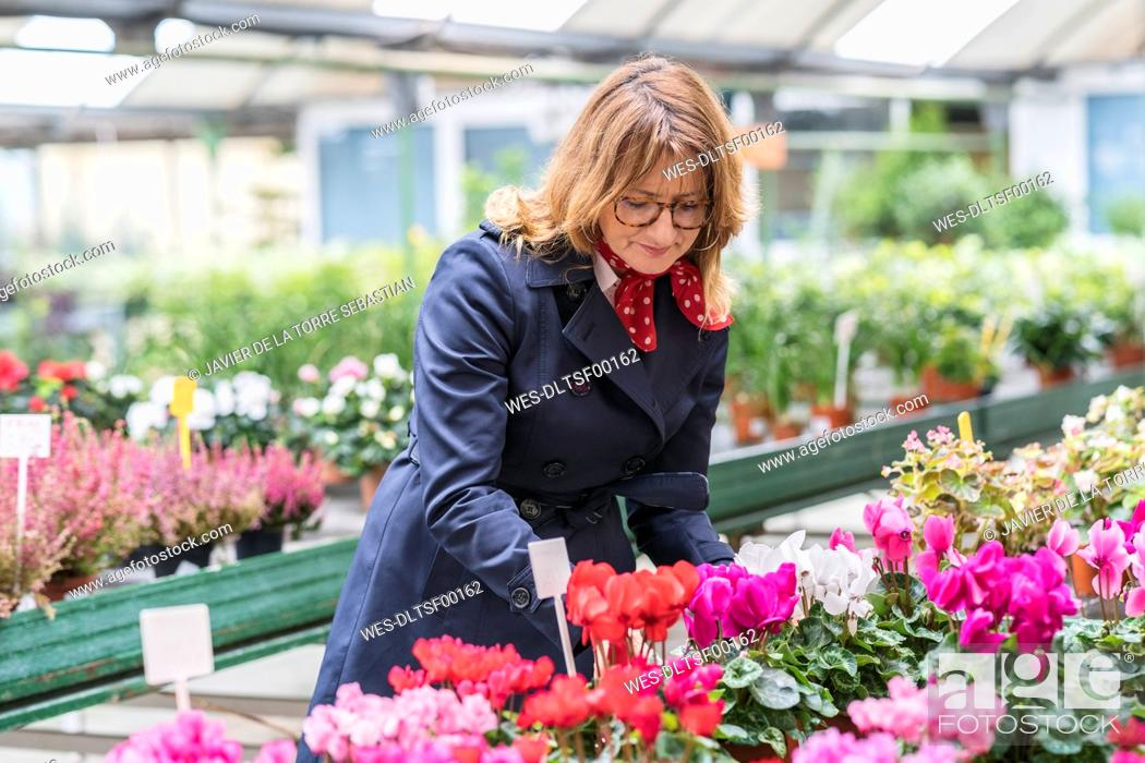Imagen: Woman buying flowers in plant nursery.