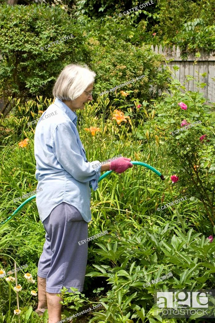 Stock Photo: Woman working in her garden.