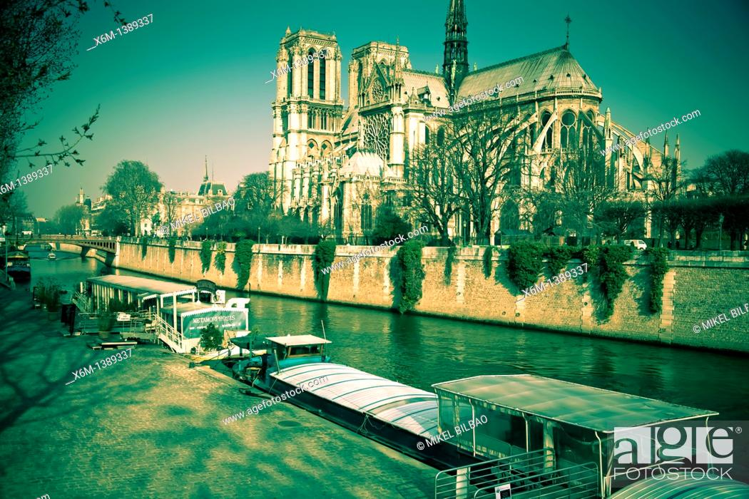 Stock Photo: Notre Dame Cathedral and Seine river and tourist boat  Paris, France, Europe.