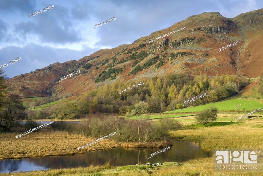 Stock Photo: Autumnal view of the River Brathay and Lingmoor Fell in the Lake District National Park, Cumbria, England.