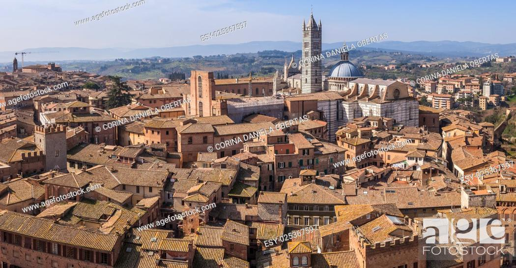Stock Photo: View above Siena roofs with the cathedral in the background, Tuscany, Italy.
