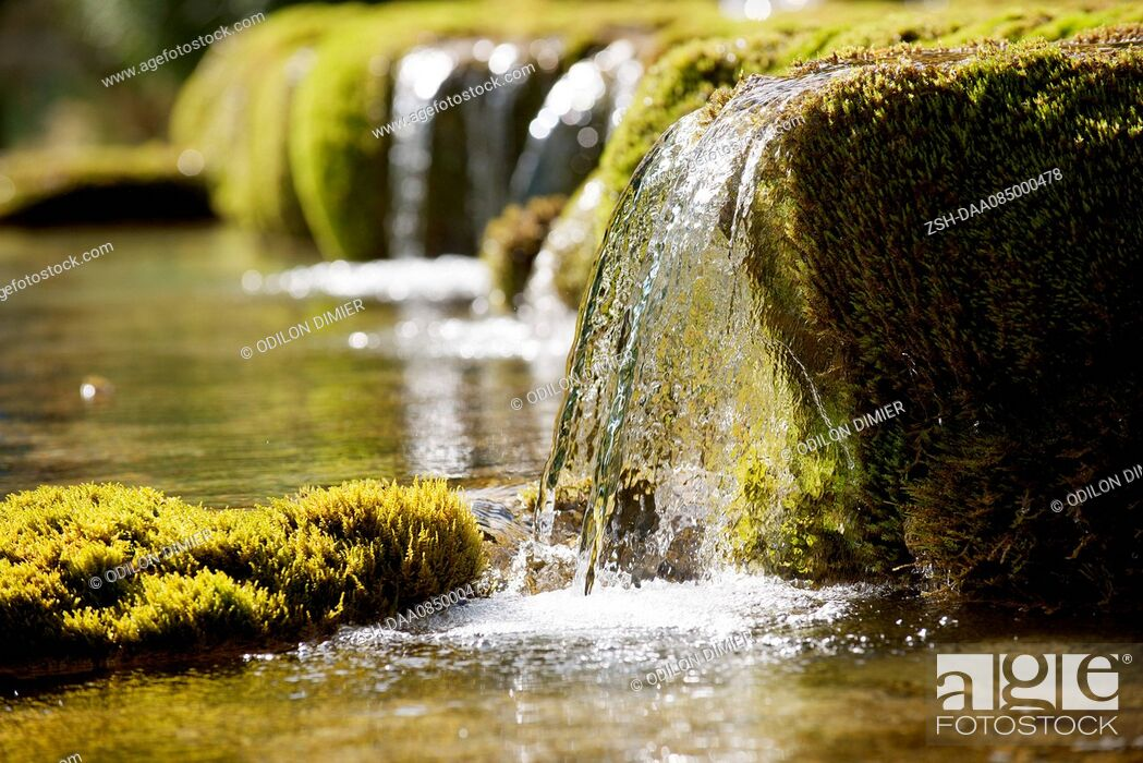 Stock Photo: Water flowing over moss covered rocks.