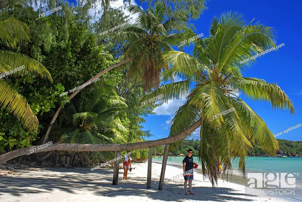 Stock Photo: Cote D'Or one of the most beautiful beaches in Praslin Seychelles.