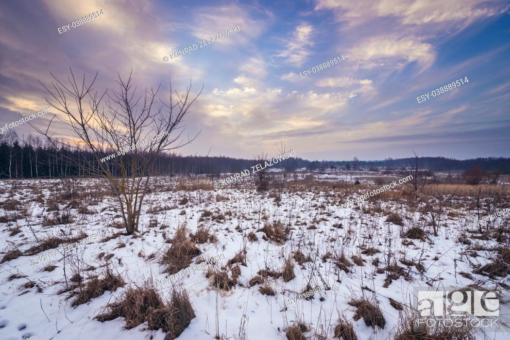 Stock Photo: Rural landscape in Kruszyniany village, former Polish Tatars settlement within Sokolka County, Podlaskie Voivodeship of Poland.