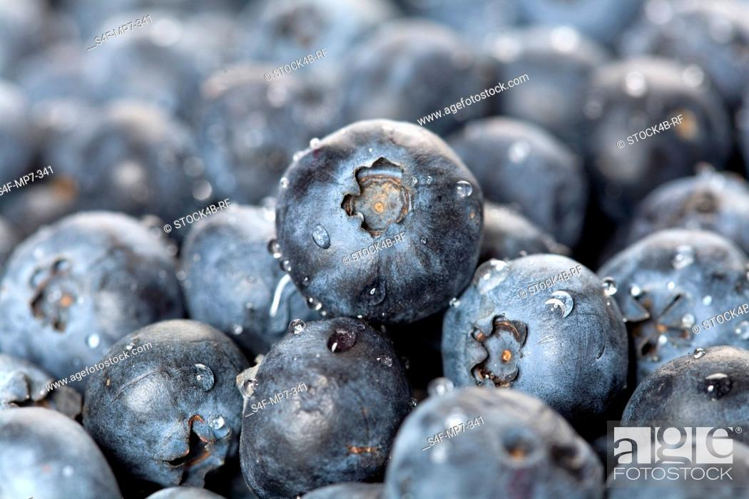 Stock Photo: Detail of blueberries.