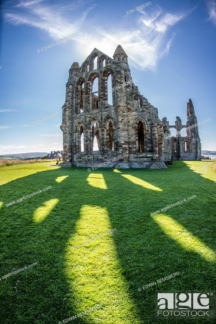 Stock Photo: Sunlight casts powerful shadows of Whitby Abbey onto grassy field, Whitby, Yorkshire, UK.
