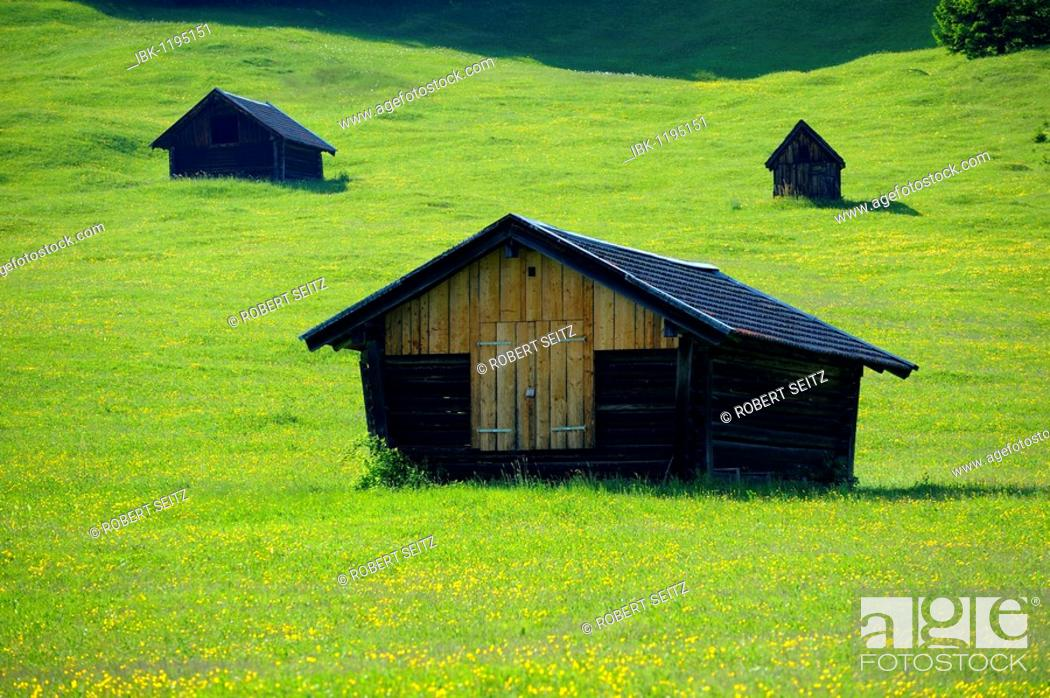 Stock Photo: Small sheds on a spring meadow, Gerold, Mittenwald, Upper Bavaria, Bavaria, Germany, Europe.