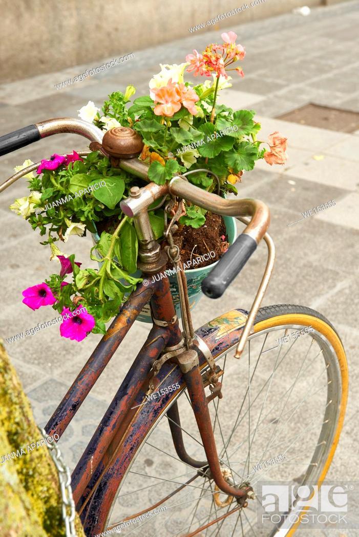 Stock Photo: Flower Pot on the Bike, Bilbao, Biscay, Basque Country, Euskadi, Spain, Europe.