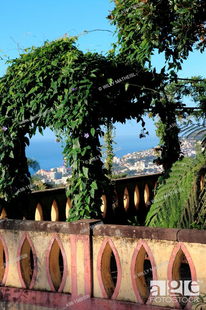 Stock Photo: Botanical Gardens, Funchal, Portugal, Europe.