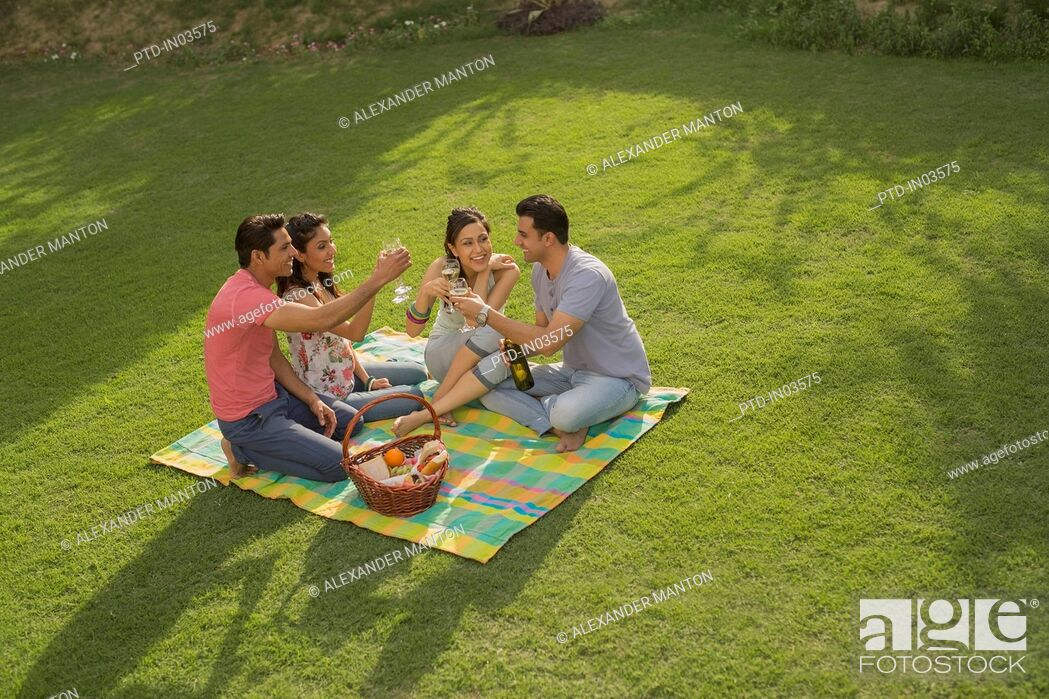 Stock Photo: Four people on picnic blanket with wine, celebrating.