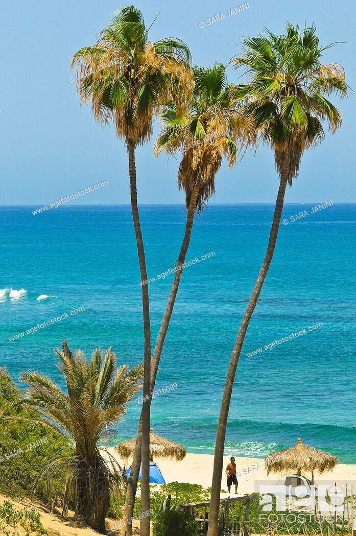 Stock Photo: Cabo Pulmo National Marine park, Gulf of California, Baja California, Mexico, North America.