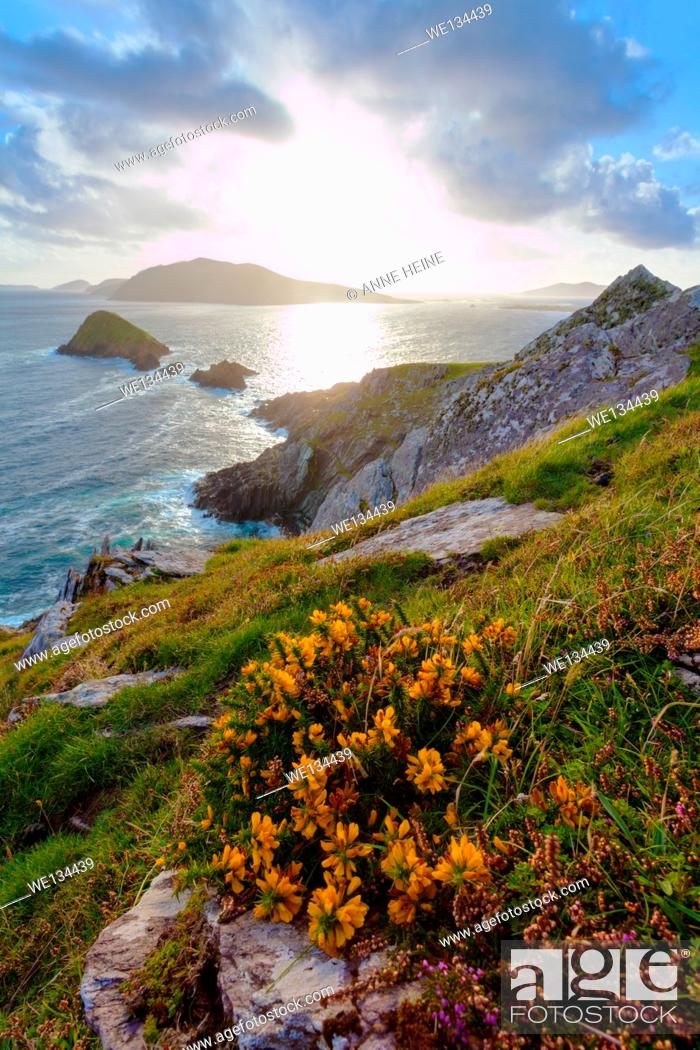 Stock Photo: looking from dingle peninsula in western ireland towards blasket islands while sky is clearing, coordinates: 52.109576, -10.477570, exposures enfused.