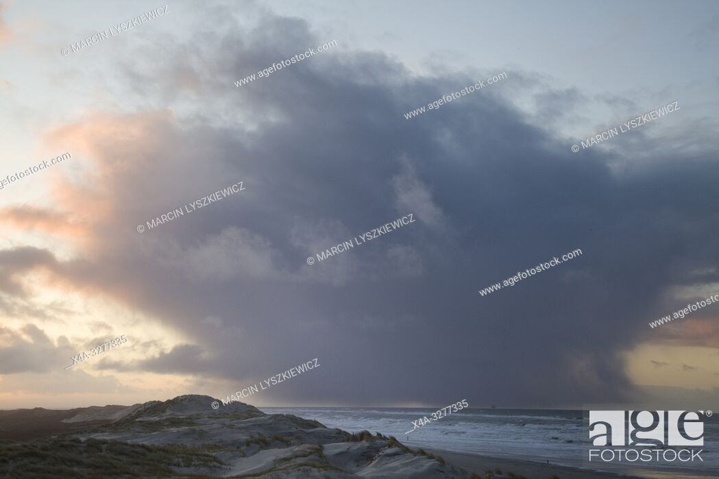 Imagen: dunes on Wadden Sea coast, Terschelling island, Netherlands.