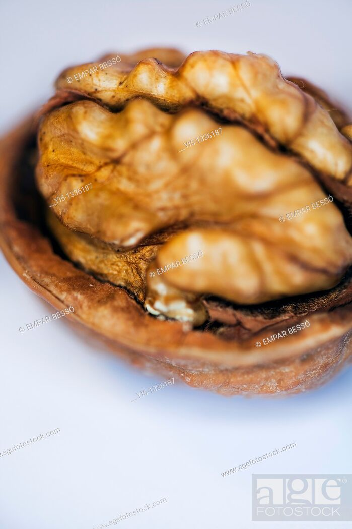 Imagen: Walnut close-up.