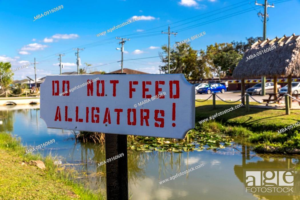 Stock Photo: Shield, Do not Feed Alligators, Do Not Feed, Miccosukee, Indian Village, Everglades National Park, Florida, USA, North America.