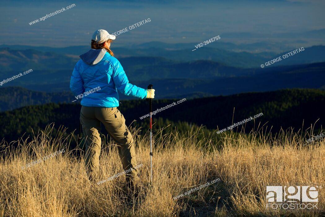 Photo de stock: Hiker on Marys Peak summit, Marys Peak Scenic Botanical Area, Siuslaw National Forest, Oregon.