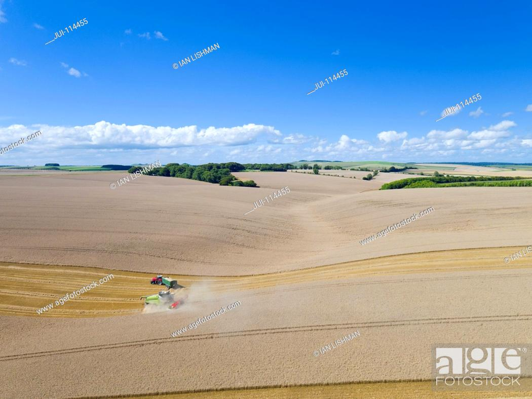 Stock Photo: Aerial View Of Combine Harvester Harvesting Wheat Crop.