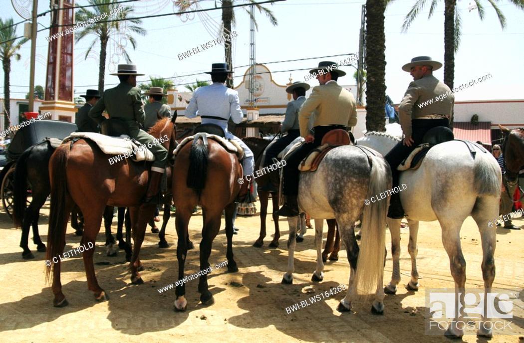 Stock Photo: festive day Feria del caballo in Jerez, Spanien, Andalusien, Jerez De La Frontera.