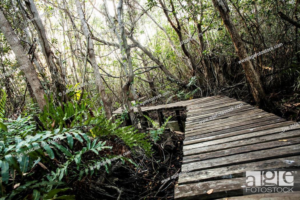 Stock Photo: San felipe, Ria Lagartos Biosphere Reserve, Yucatan Peninsula, México.