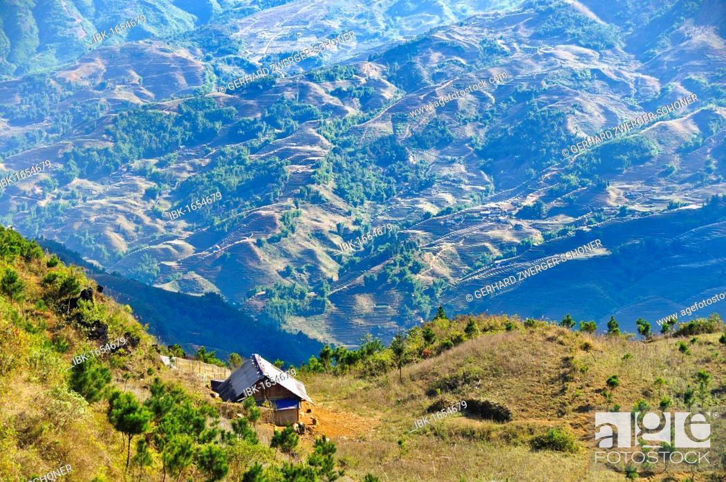 Stock Photo: Region around Sapa or Sa Pa, northern Vietnam, Vietnam, Asia.