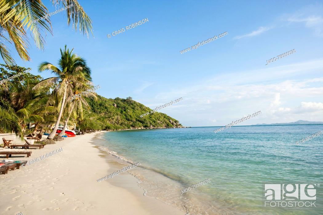 Stock Photo: Beach and palm trees on Koh Pha Ngan, Thailand.