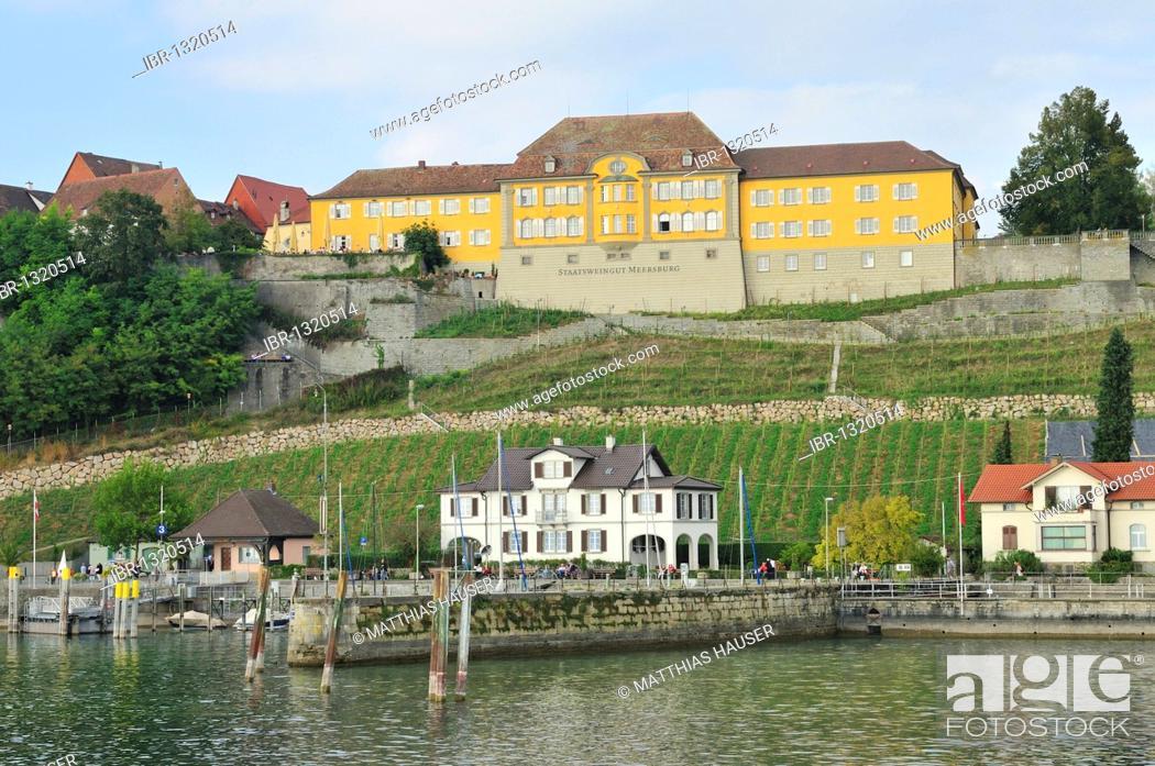 Stock Photo: Meersburg port, State Vineyards, Lake Constance, Baden-Wuerttemberg, Germany, Europe.