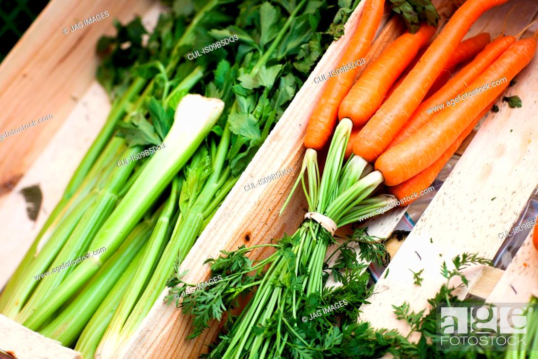 Stock Photo: Crate of fresh carrots and celery at local french market.