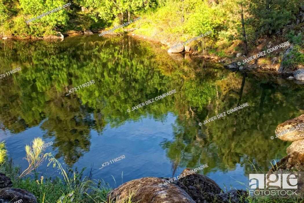 Stock Photo: Burguillo Reservoir  Iruelas Valley Natural Reserve  Avila province  Castilla y Leon  Spain.