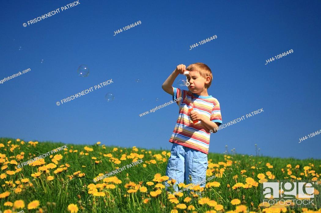 Stock Photo: Boy, stand, meadow, dandelion, flowers, blow, soap bubbles, play, spring, Canton Zurich, Switzerland, Europe, fun, pla.