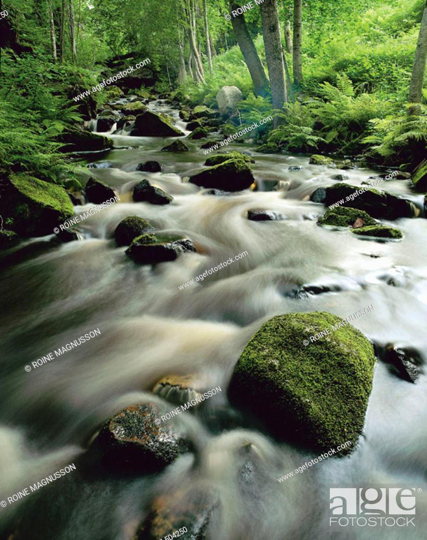 Stock Photo: Rivers and Streams. Närke. Sweden.
