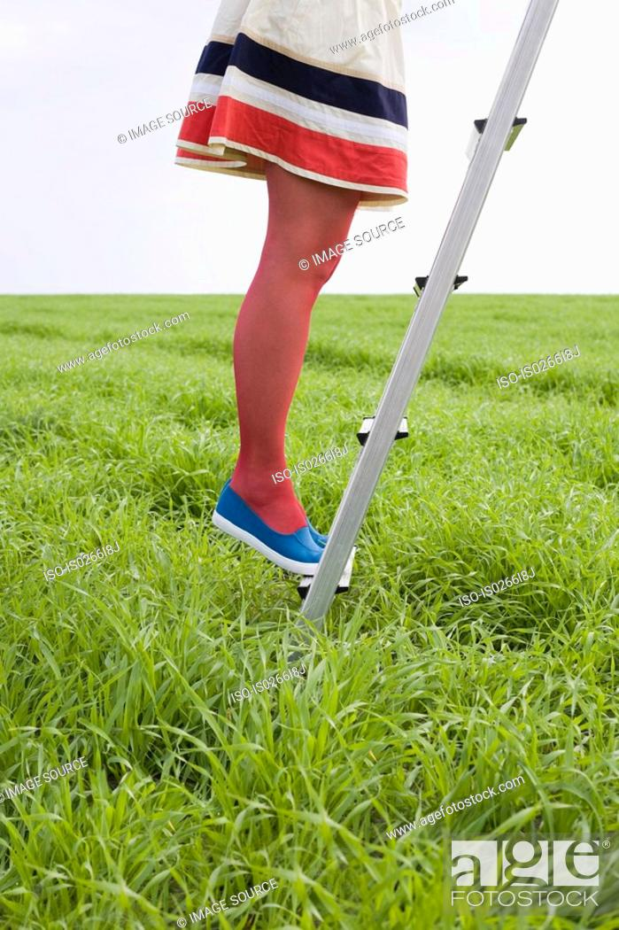 Stock Photo: Woman standing on a ladder in a field.