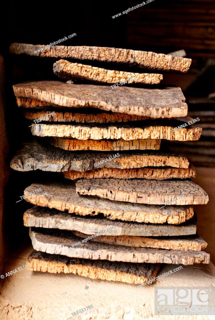 Stock Photo: Cork from oaks.La Algaba de Ronda; Ronda. Serranía de Ronda. Málaga province. Andalucia. Spain.