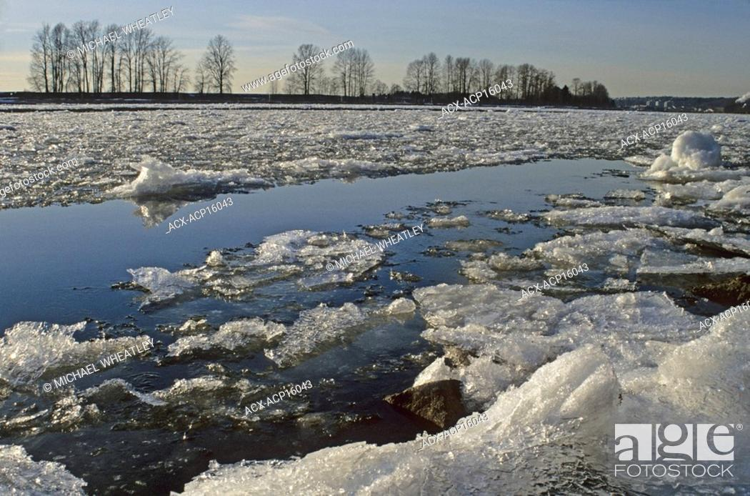 Stock Photo: Ice in Fraser River at Fraser Foreshore Park, Burnaby, British Columbia, Canada.