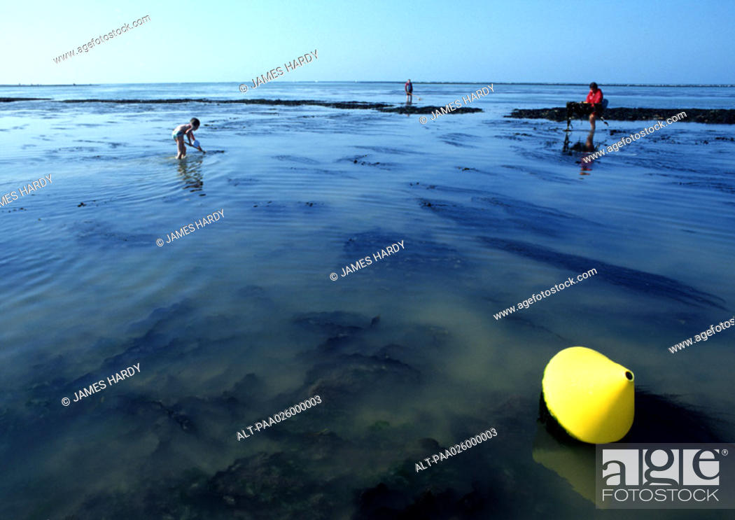Stock Photo: France, Normandy, people fishing at lowtide.