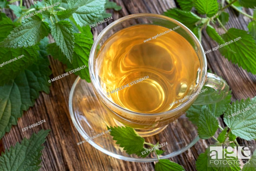 Stock Photo: A cup of nettle tea with fresh plant on a rustic background.